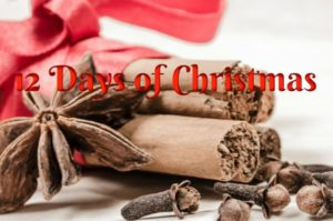 Facebook StampAfterSunrise, 12 Days of Christmas Fun